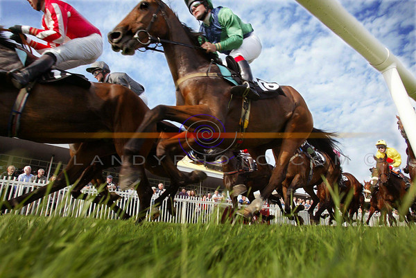 A Mouse's view of teh action from the Opening day of the Listowel Festival Meeting of racing .<br /> Pic Brendan Landy