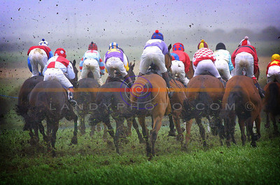bums the word ............... jockeys shot from the rear as they plough a muddy field in  mid summer at the ballybunion races  .Pic Brendan Landy