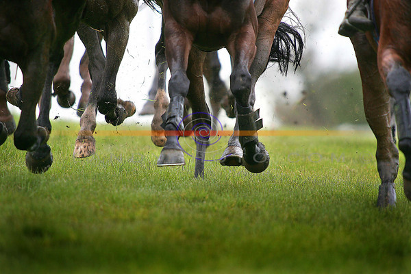 Wet and soggy conditions at Listowel Races.<br /> Photo Brendan Landy<br /> <br /> FILE PIC