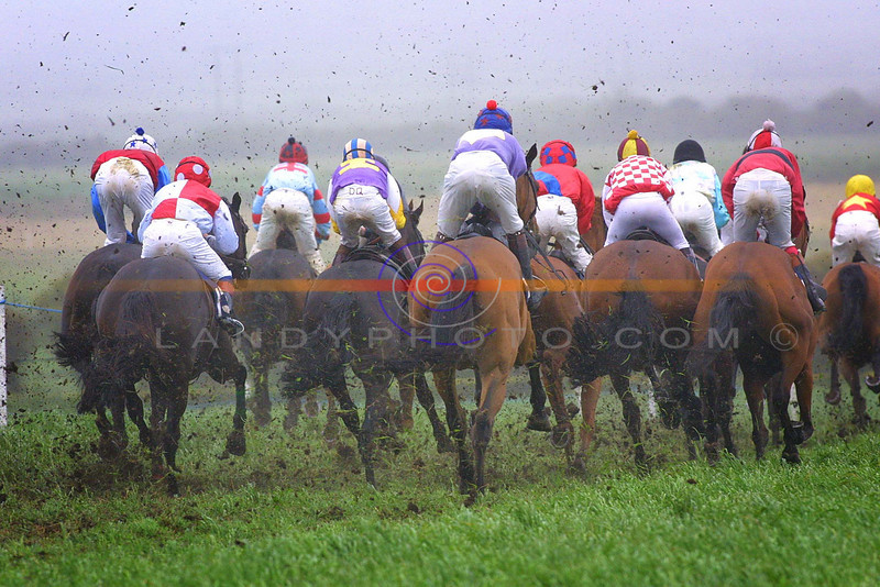 bums the word ............... jockeys shot from the rear as they plough a muddy field in  mid summer at the ballybunion races <br /> .Pic Brendan Landy