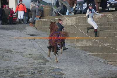 An out of control horse  heads towards the croud after it lost its rider and its saddle sliped . Photo Brendan Landy