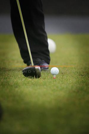 File Pic   Golf Photo Brendan Landy