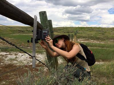 Rachel Herring checking a camera trap