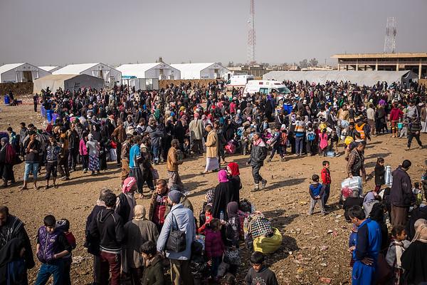 Arrivals in Hamam al-alil