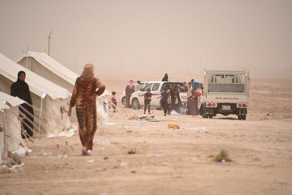 Fallujah displacement crisis
