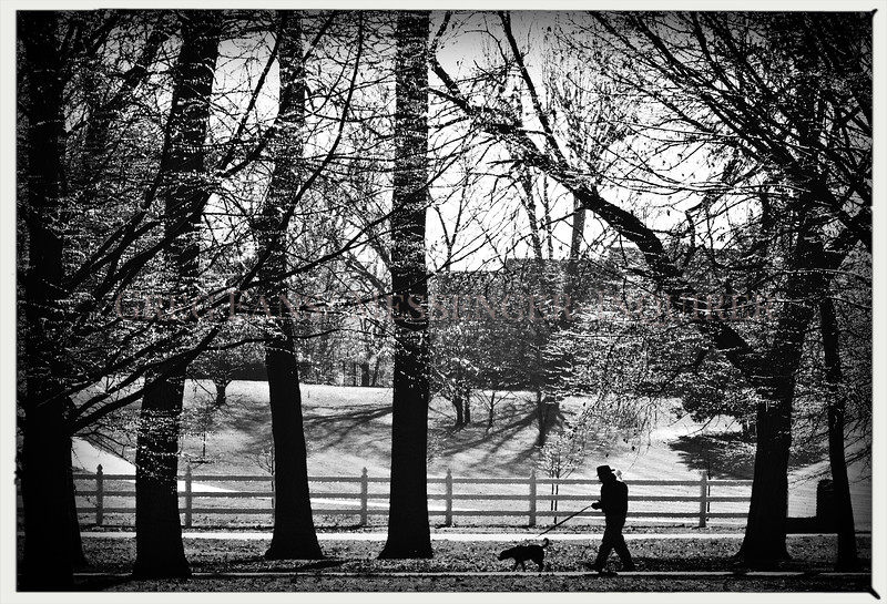 Bill McMillian and his dog, Lucy, take a lap around the walking path at Legion Park as the sun backlights ice covered trees on Thursday, Feb. 8, 2018, in Owensboro, Ky.