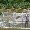 Setting the nets