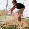 Photo by Greg Eans, Messenger-Inquirer.com/geans@messenger-inquirer.com<br /> <br /> David Beam, 7, spreads shavings around a small animal cage while helping set up the All-American Petting Zoo at the Daviess County Lions Club Fair. The fair features a variety of daily attractions including laser tag, pony rides, 4-H/FFA projects and carnival rides.