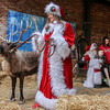 Kathy Martin, dressed as Mrs. Claus, holds the reins of Prancer the reindeer as her husband, Steve Martin, dressed as Santa Claus, sits for a portrait with Kaelyn Reynolds, 12 and her brother, Paxton, 4, on Saturday, Dec. 3, 2016, in Owensboro, Ky., during The Reindeer Experience at the Owensboro Museum of Science and History, part of downtown Owensboro's Holiday Stroll. (Greg Eans/The Messenger-Inquirer via AP)