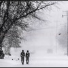 Photo by Greg Eans, Messenger-Inquirer.com/geans@messenger-inquirer.com<br /> <br /> Neighborhood friends Jesse Henning, left, and Justin Ward walk along York Street as snow falls around them and a bird flies by on Friday, Jan. 12, 2017, in Owensboro, Ky. The two were enjoying a day off from school due to the weather.