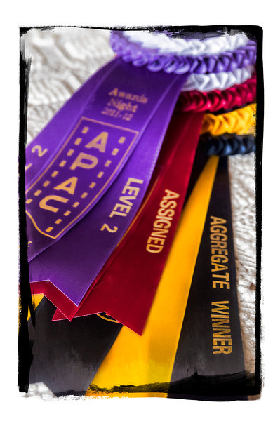 Awards won from Abbotsford Photo Arts Club - 2012.  Top score in Level 2 and overall highest score in Club for the year.