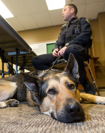 Johnny, a Garden City Police Department service dog, rests at the feet of officer Rich Colburn during an interview Friday.