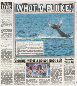 New York Post | September 18th, 2012