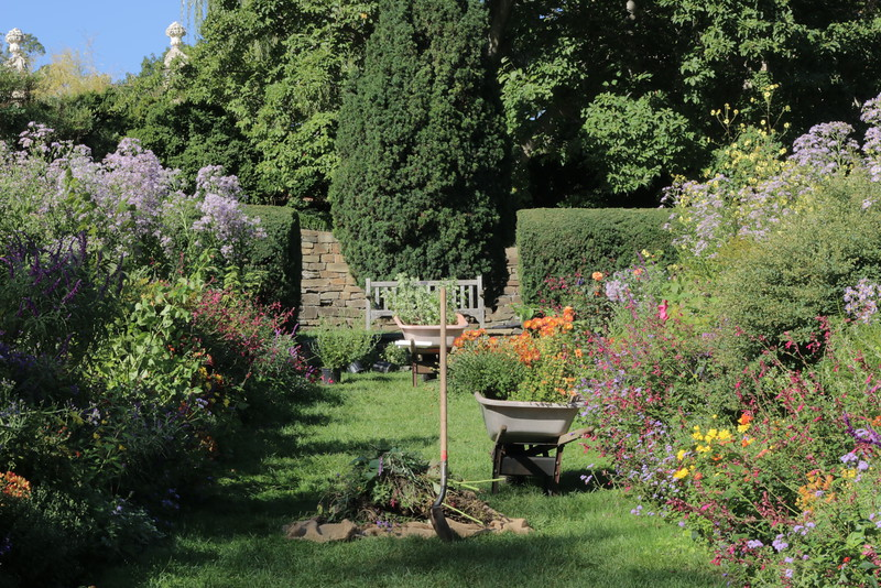 Herbaceous Borders in fall during morning garden work