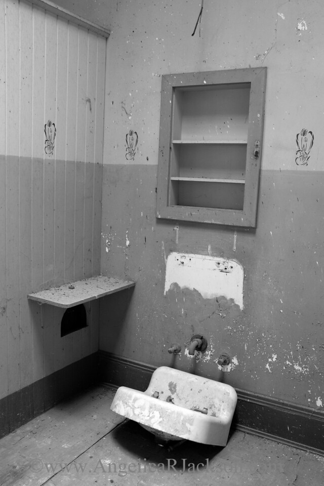 """""""Posey"""" (Black & White)<br /> Stencil and paint details in the skylit 3rd floor bathroom<br /> April 2013"""
