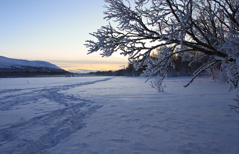 Prestvannet, Tromsø. Cold winter in early January. Still twelve days before the sun climbs over the horizon again...