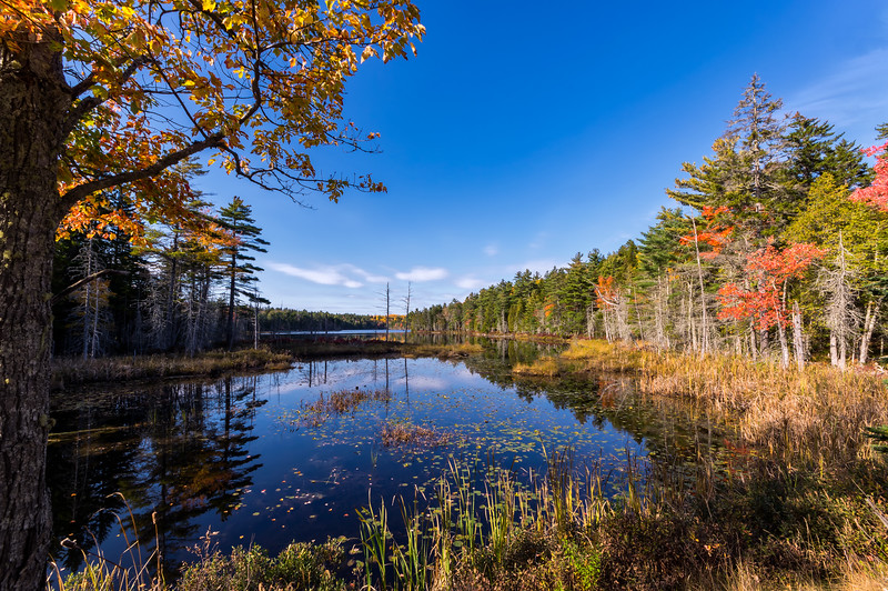 Pretty Marsh on MDI 10-21-17