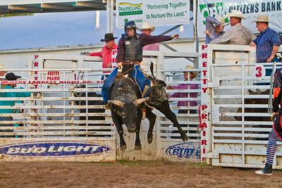 Pretty Prairie Bull Mania