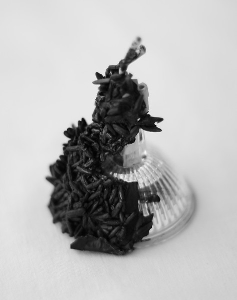 Halogen bulb encrusted with carbonised rice