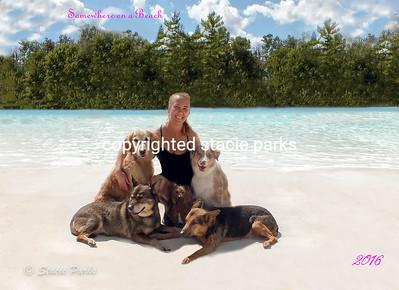 The Beach Waterpark 2016
