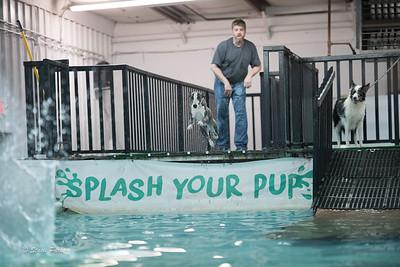 splashyourpup-19
