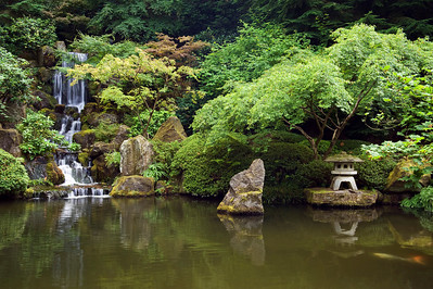 Green Peace - Japanese Gardens