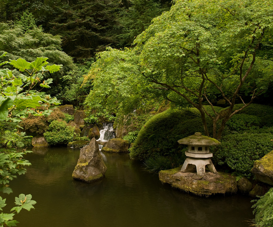 Calming Pool - Japanese Garden