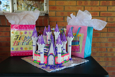 Castle Cake, compliments of Tia Stephanie