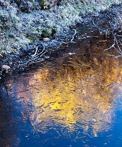 Dawn Mayflower Gulch, Copper Mountain