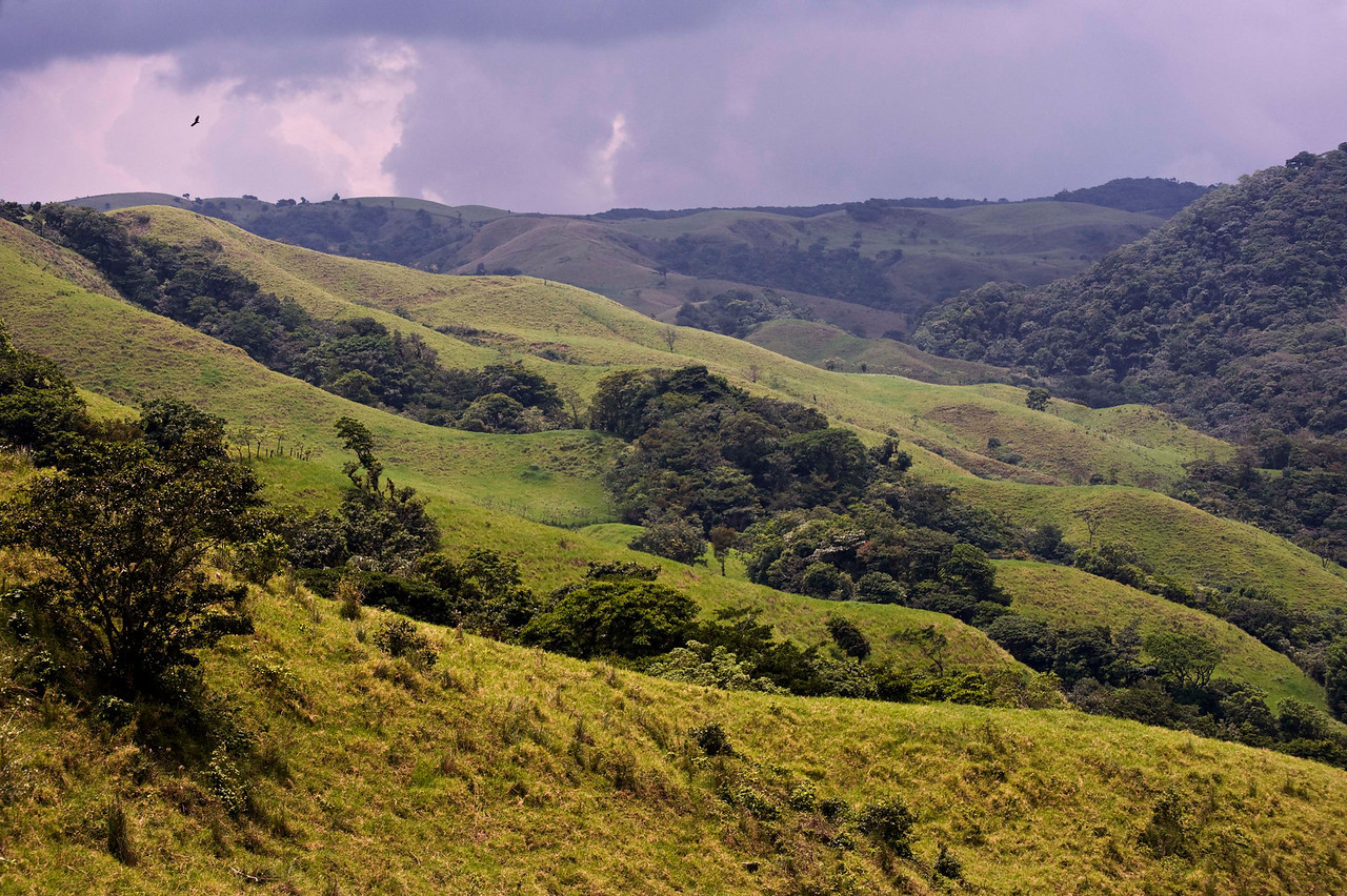 Countryside between Lake Arenal and Santa Elena/Monteverde