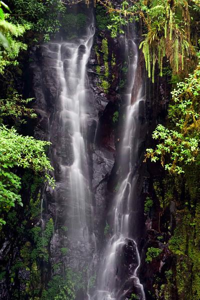Detail, Catarátas de Fátima, Bosque de Paz Reserva Biologica