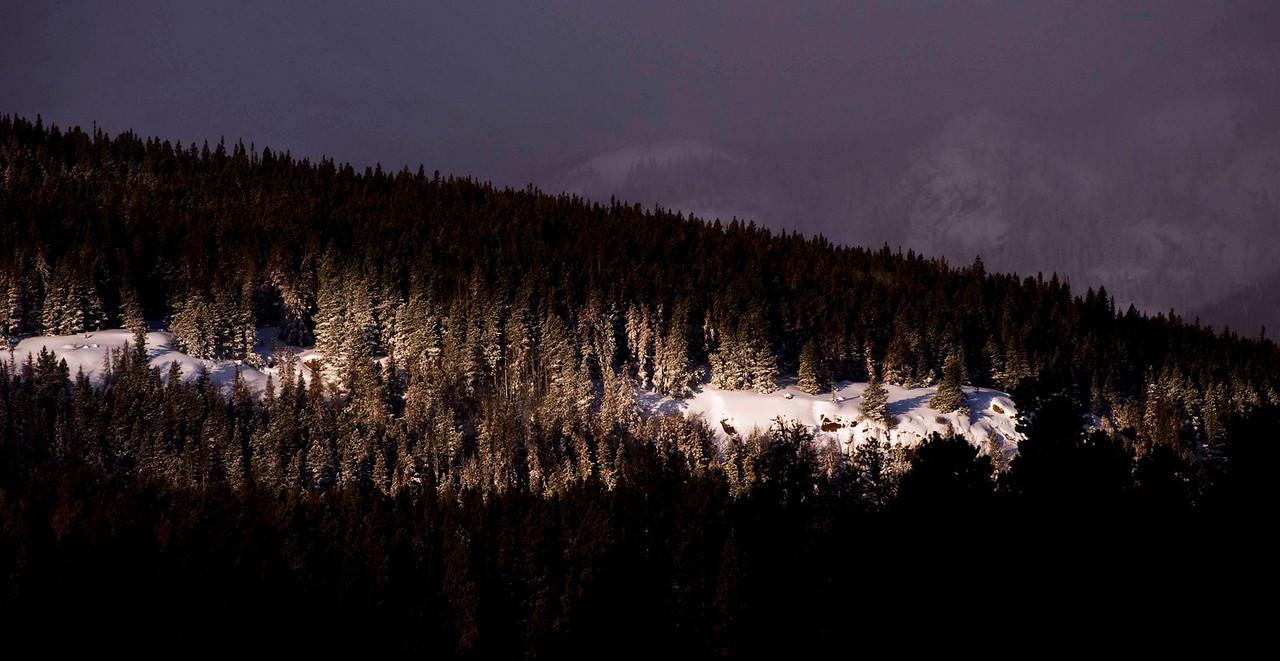 Spotlights above Sprague Lake