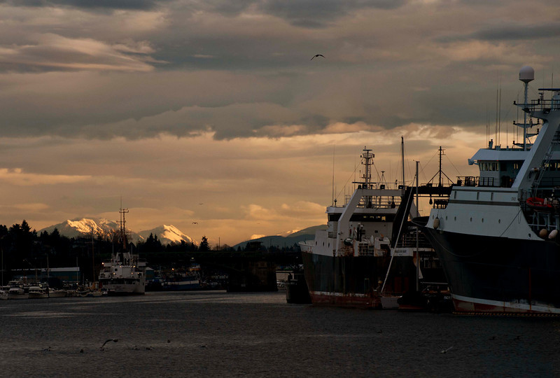 Seattle, beautiful light on the mountains from the Locks