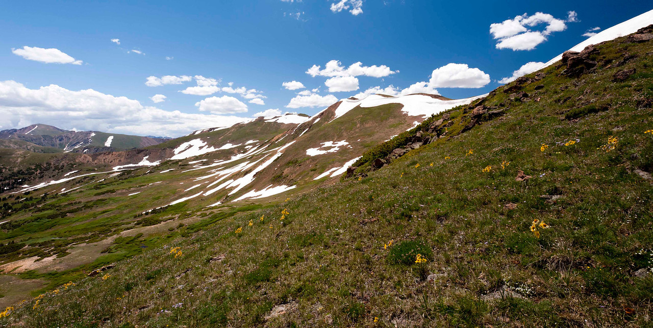 Mountainsides full of wildflowers, water, and snow!  Lovely indeed!