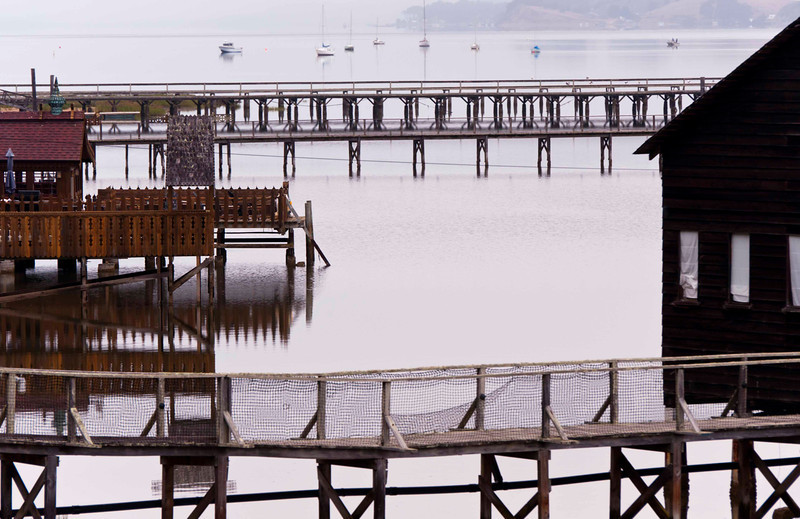 Piers, Tomales Bay near Inverness