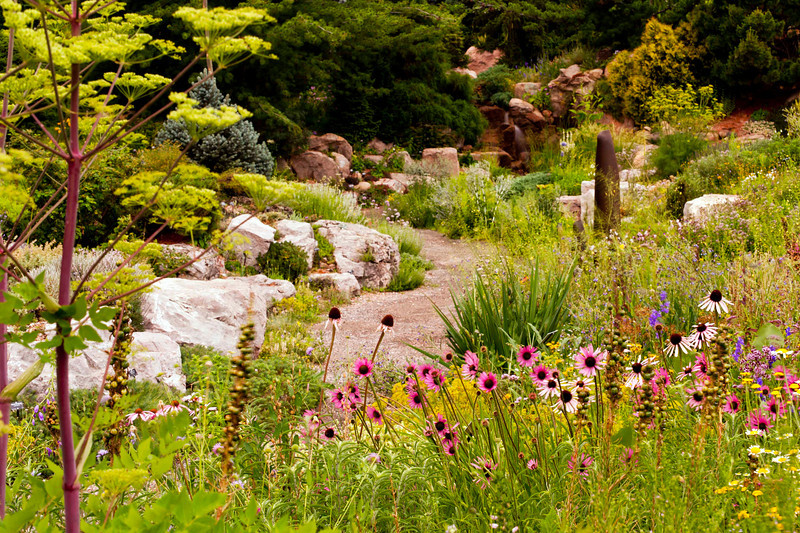 The Alpine Garden - view from the Prairie Garden.  Eye candy all around.