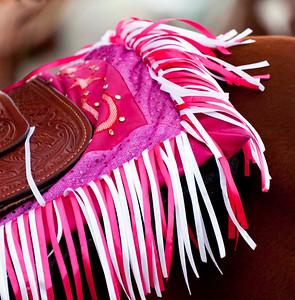 Who knew horses wore fuschia and purple?!?!?!?