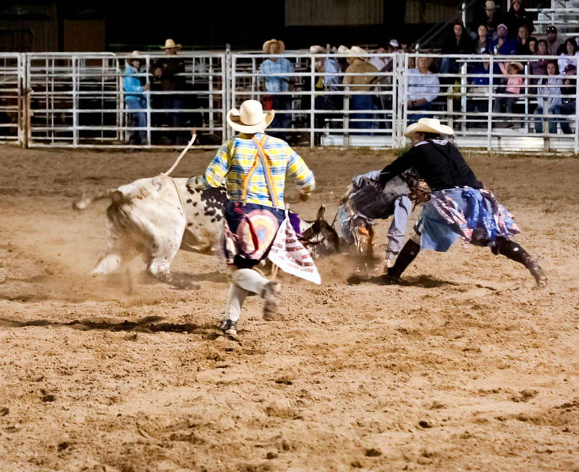 Bull riding - the rodeo clowns are fearless!