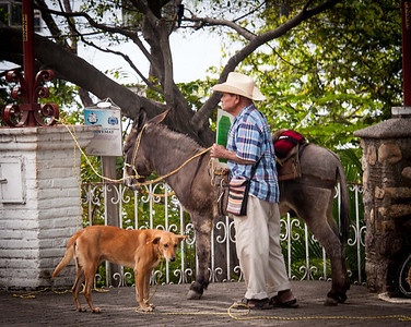 A man, his dog and his burro . . . for only $3, you, too, could take his picture.  And no - I didn't pay anyone $3 . . .
