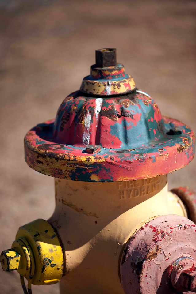 Hydrant, in full color