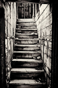 stairway in old mining cabin, Stevens Gulch Road