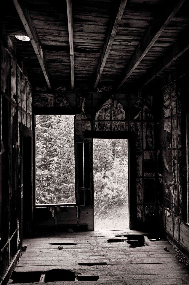 inside looking out, old mining cabin, Stevens Gulch Road
