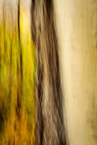 Aspen - abstraction