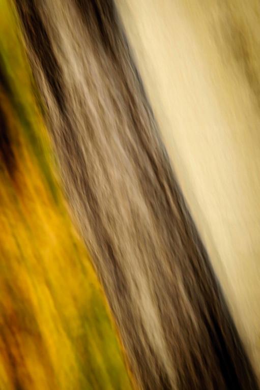 Aspen, abstraction