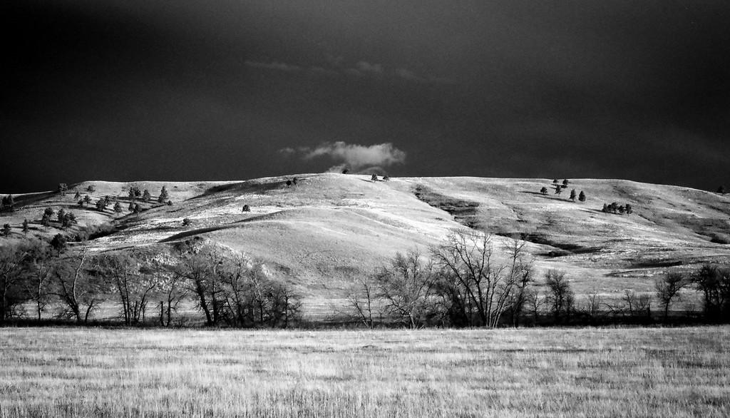 Custer State Park, wildlife loop