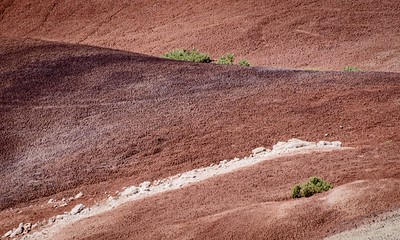 Desert colours and textures