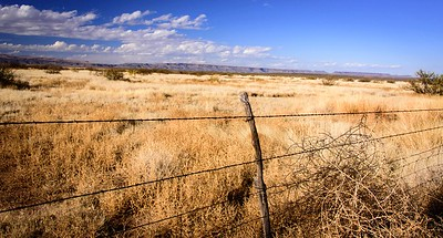 Fenced 2