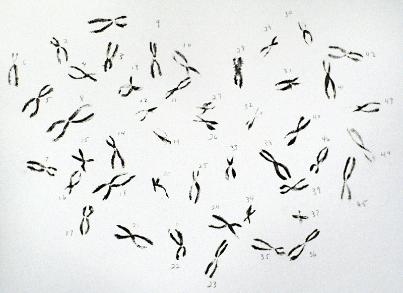 "Literal Fingerprints 9/23. Ink fingerprint on paper, 9"" x 12,"" 1992."