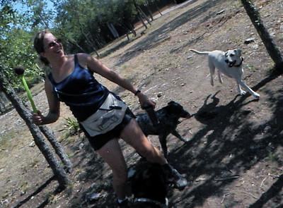get ready to run pups