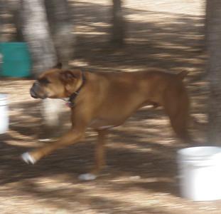 Buckley getting his run on